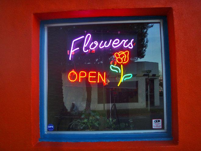 flowersopen.jpg